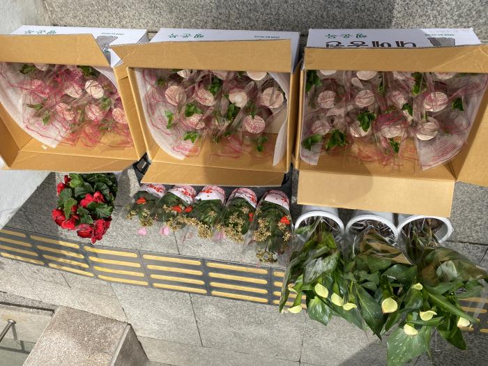 03.29 다향원-꽃41개.jpg