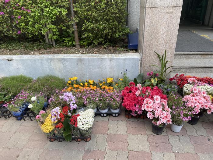 04.07 다향원-꽃130개.jpg